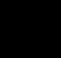 RACCORD PAD 45 ° M8